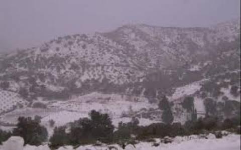 Στο έλεος του χιονιά η Κρήτη - Προβλήματα στην ηλεκτροδότηση