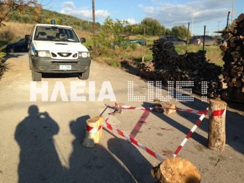 Έγκλημα στην Ηλεία – Σκότωσε τον αδερφό του για μία ελιά