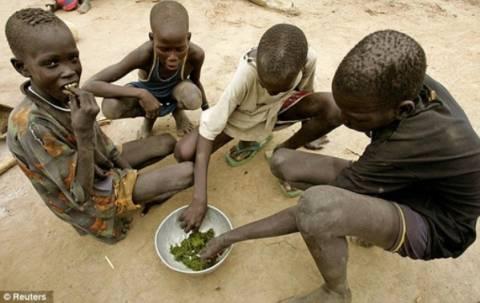 Σοκ-Τρώνε φλοιούς δέντρων και φύλλα για να επιβιώσουν