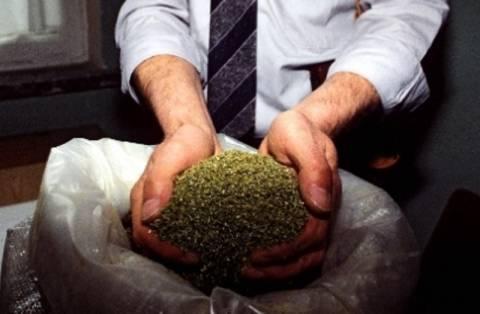 Αλβανία: Κατασχέθηκε μαριχουάνα που είχε προορισμό την Ελλάδα