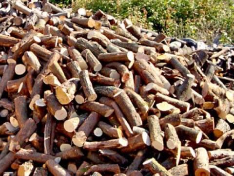 ΥΠΕΚΑ: Σε κοινωφελή ιδρύματα οι 13.088 τόνοι των κατασχεμένων ξύλων