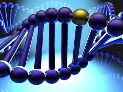 Έχεις το «γονίδιο του ηγέτη»;