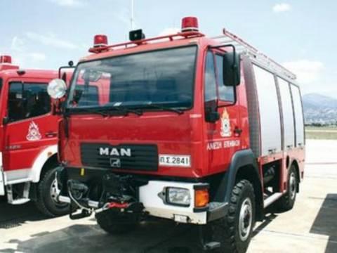 Ηλεία: Πανικόβλητος βοσκός κάλεσε την Πυροσβεστική γιατί...