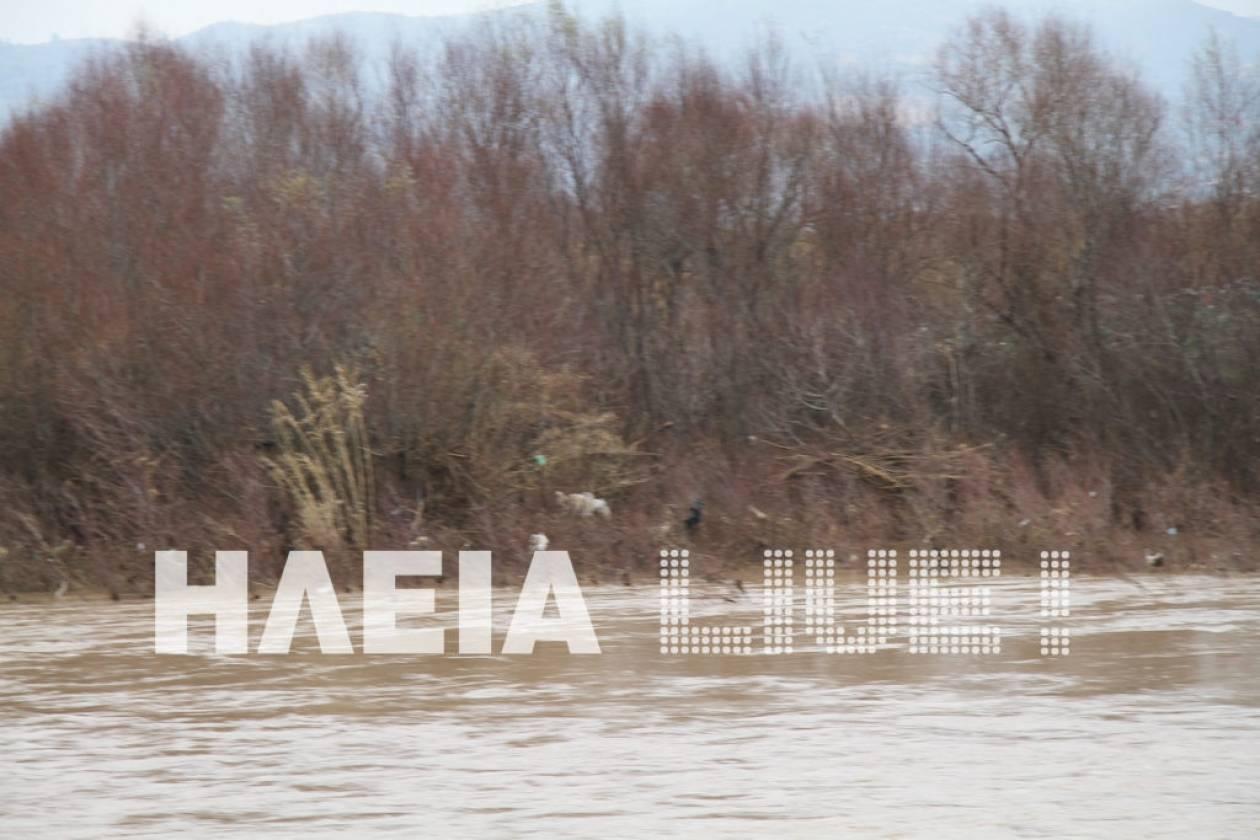Περιβαλλοντική καταστροφή στην Ηλεία