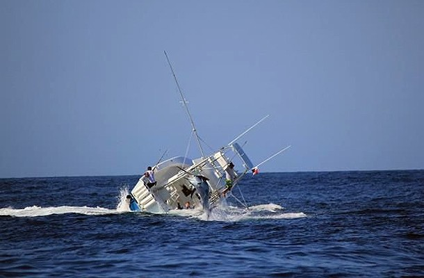 Απίστευτο: Τεράστιος ξιφίας βύθισε ψαράδικο!