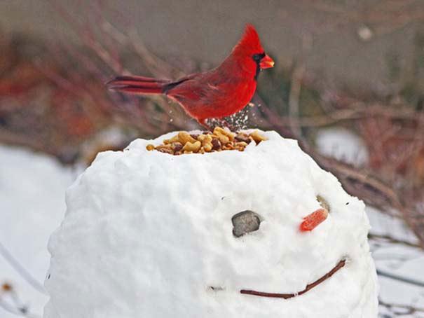 Οι πιο αστείοι χιονάνθρωποι που έχετε δει! (pics)