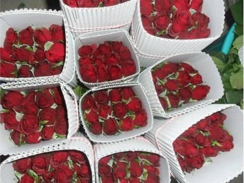 Τριαντάφυλλα από την Τουρκία για τη γιορτή του Αγίου Βαλεντίνου