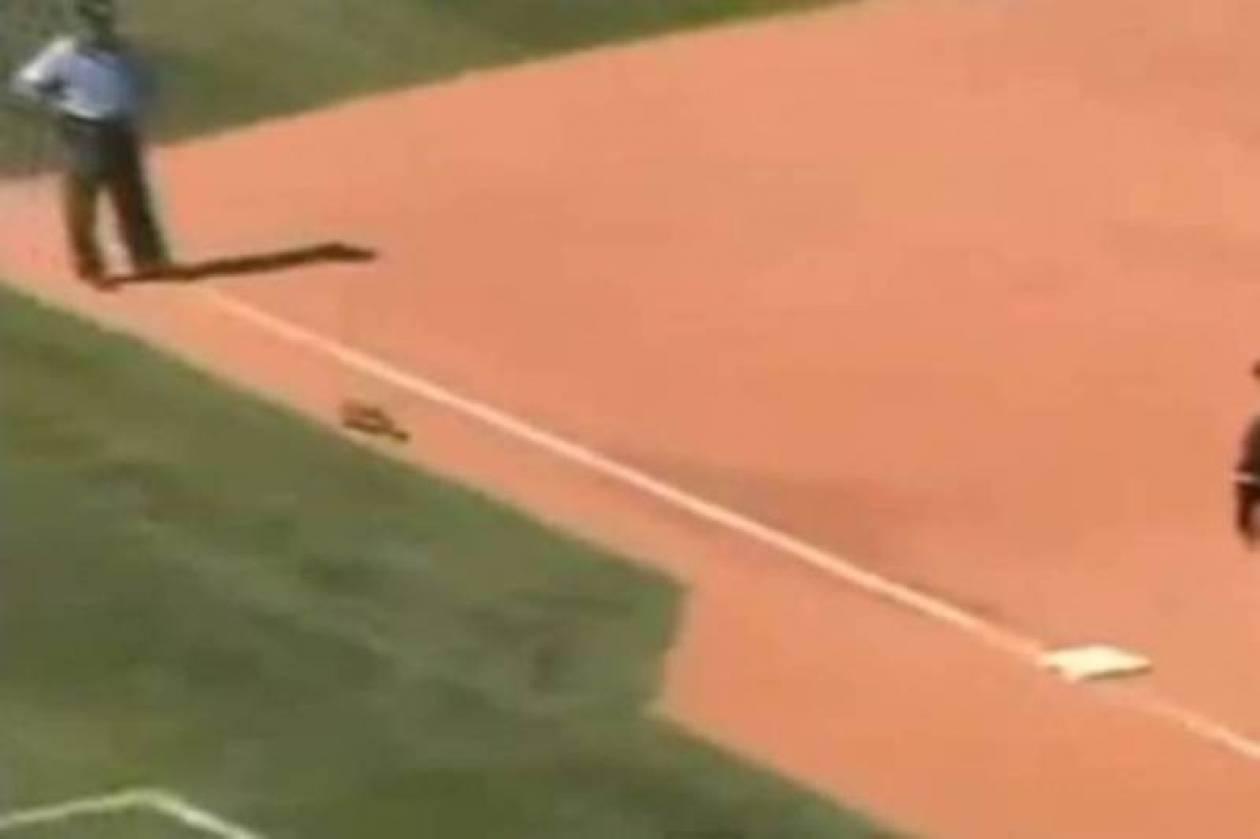 Απίστευτο... σόου από σκίουρο σε αγώνα μπέιζμπολ (Video)
