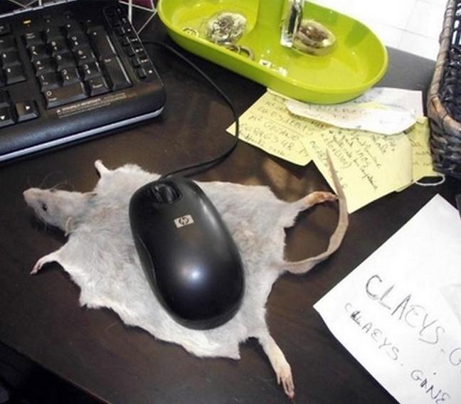 Δείτε: Ένας υπολογιστής, δύο ποντίκια!