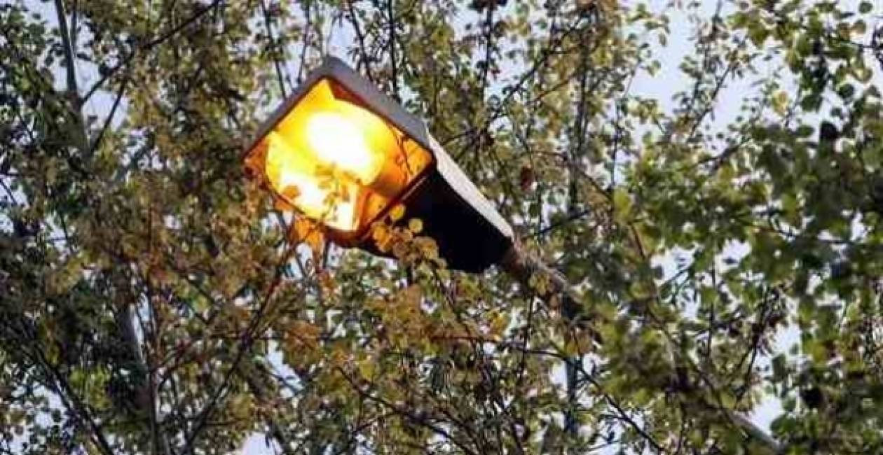 Υπογραφή σύμβασης για επέκταση δικτύου φωτισμού Σαλαμίνας