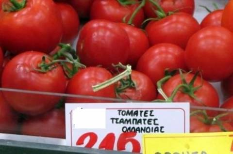 TIME: Η Ολλανδία εξάγει ντομάτες και η Ελλάδα… τις εισάγει!