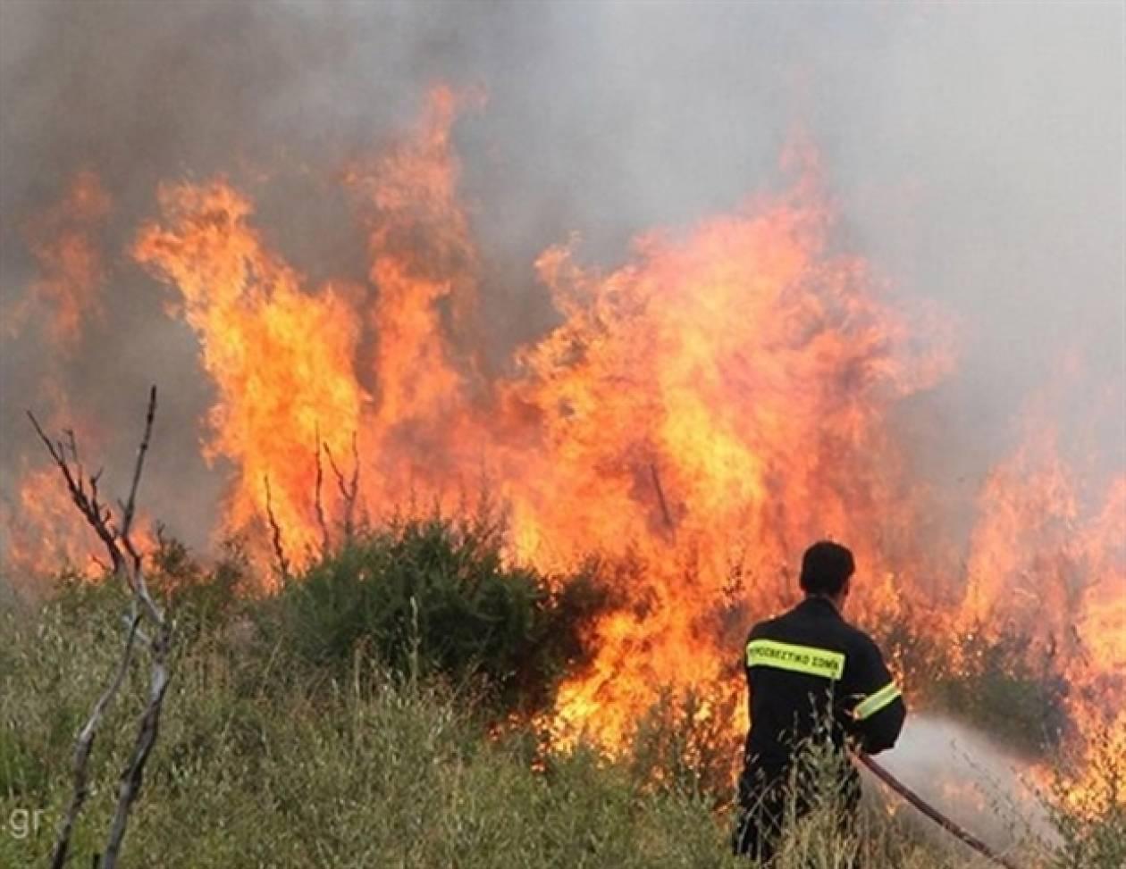 Στις φλόγες δύο δασικές εκτάσεις στο Ρέθυμνο