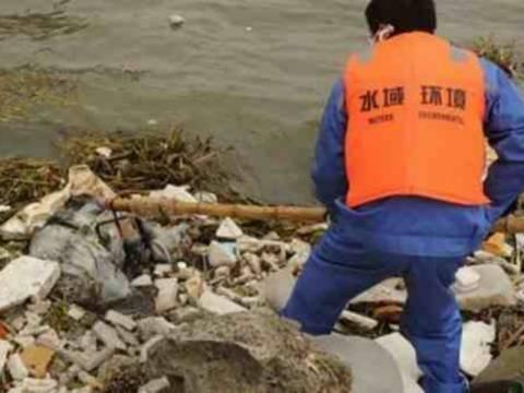 Ξεπέρασαν τις 13.000 τα πτώματα των χοίρων σε ποταμό της Σανγκάης