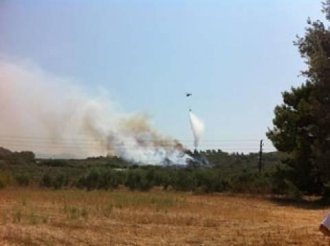 Συναγερμός στη Ρόδο: Μεγάλη φωτιά απειλεί την κοιλάδα των Πεταλούδων