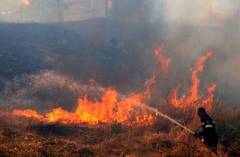 Χανιά: Φωτιά σε χορτολιβαδική έκταση στην Κίσαμο