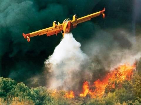 Ξεκινά η προετοιμασία για την πρόληψη των πυρκαγιών στην Πελοπόννησο