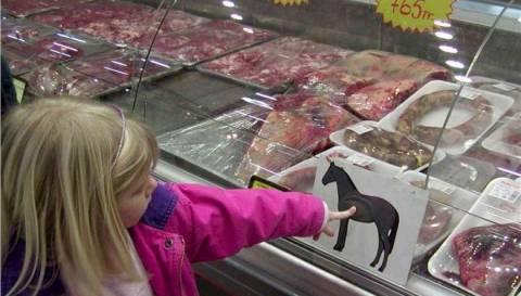 Νέα στοιχεία για το σκάνδαλο με το κρέας αλόγου