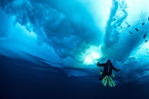 ΜΑΓΙΚΕΣ ΕΙΚΟΝΕΣ: Βουτώντας κάτω από τους πάγους της Αρκτικής!