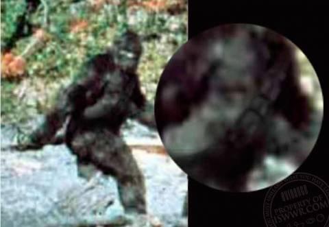 Μυστήριο: Ανακάλυψαν γιγαντιαίο πόδι (pic)