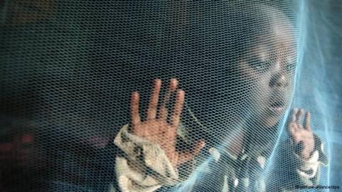 Οπλο στην ελονοσία μία επαναστατική κουνουπιέρα