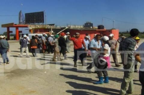 Hλεία: Ξεσηκώθηκαν Βούλγαροι εργάτες στη Νέα Μανωλάδα