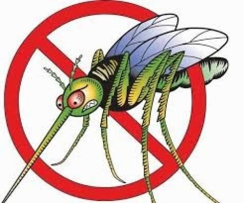 Δείτε πως θα ξεφορτωθείτε τα κουνούπια