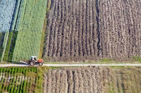 Έρευνα για τα πλαστά τιμολόγια αγροτικών προϊόντων χιλιάδων ευρώ