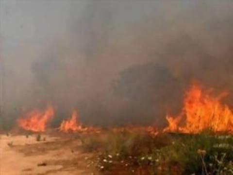 Σε εξέλιξη πυρκαγιά στο Λασίθι