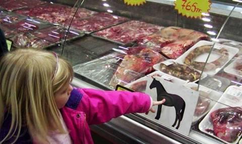 «Χειροπέδες» σε χονδρέμπορο για το σκάνδαλο με το κρέας αλόγου