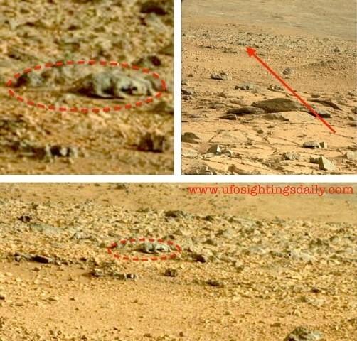Μπορείτε να διακρίνετε τη σαύρα στην επιφάνεια του Άρη;