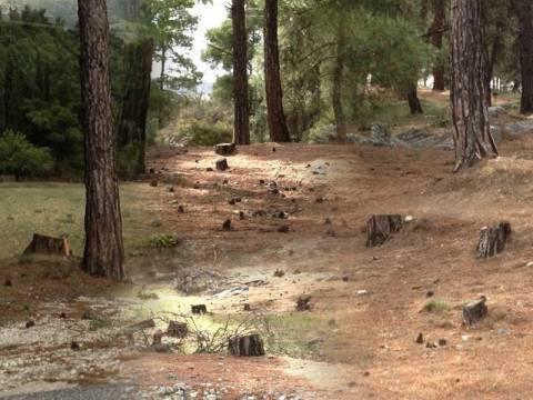Εθνικό και περιβαλλοντικό έγκλημα στις Σέρρες