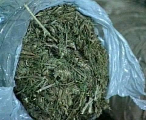 Από καλλιεργητής… εισαγωγέας 16 κιλών χασίς!