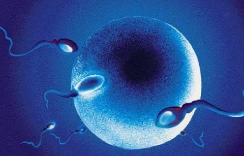 Ενημερωτική ημερίδα με θέμα την εξωσωματική γονιμοποίηση