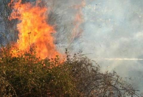 Κάνουν απολογισμό των πυρκαγιών στην Κρήτη
