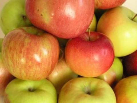 Τέρμα στην προώθηση φρούτων και λαχανικών στα σχολεία Κύπρου