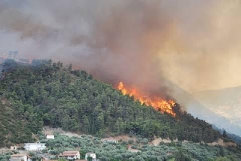 Στο κελί 60χρονος για πρόκληση πυρκαγιάς στην Πενταλιά της Πάφου