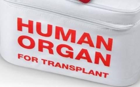 Τιμοκατάλογος ανθρωπίνων  οργάνων στη Βουλή