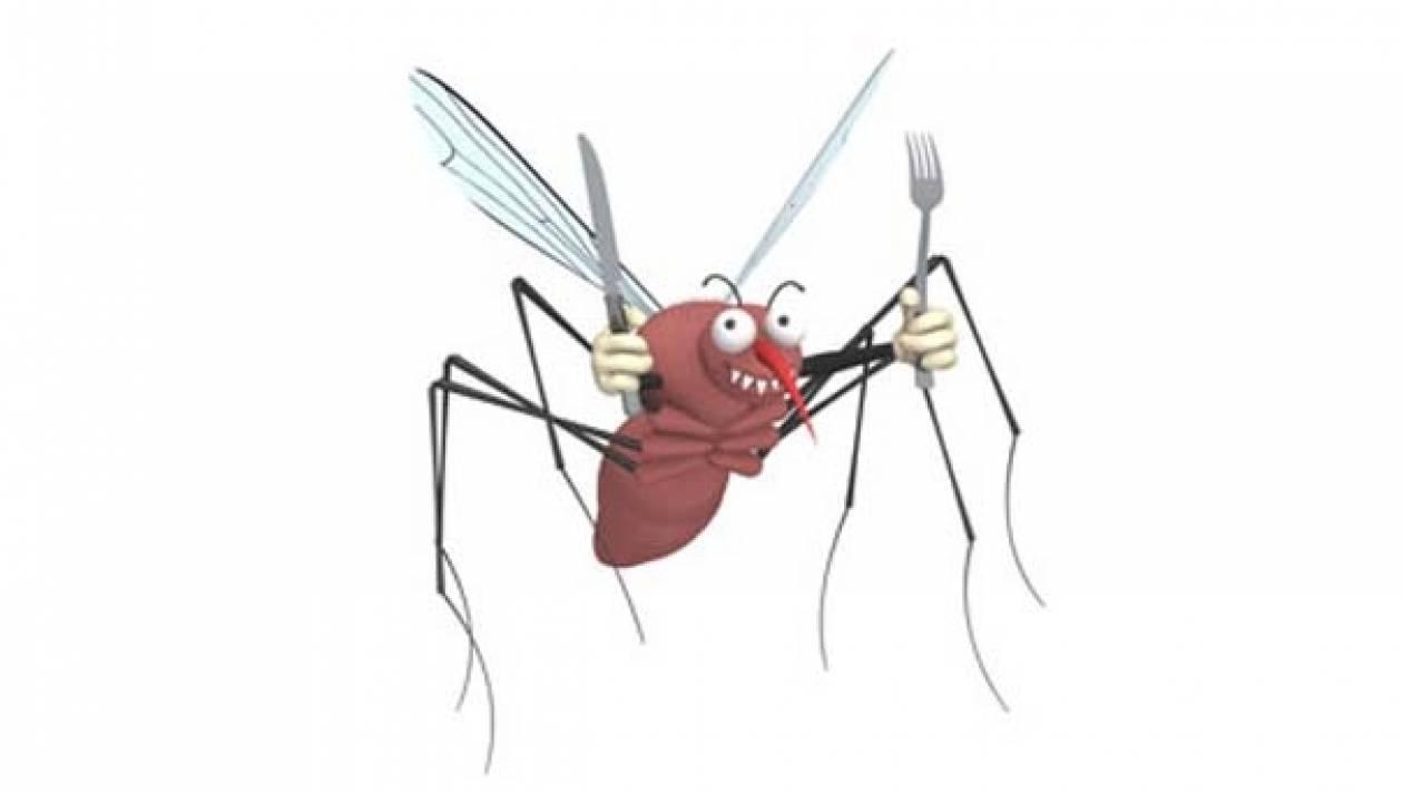 Το ξέρατε; Γιατί μας τσιμπούν τα κουνούπια;