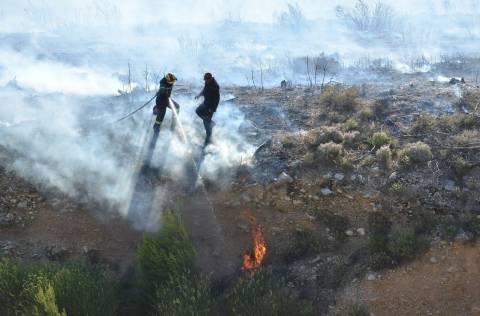 Σε ύφεση η φωτιά στους Θρακομακεδόνες (pics)