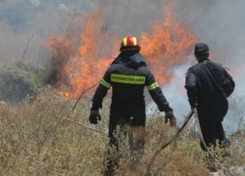Υπό μερικό έλεγχο η πυρκαγιά στην Αγιά