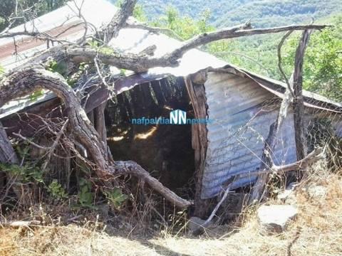 Οι κρυψώνες των Αλβανών δραπετών-Δείτε τι άφησαν πίσω τους (pics)