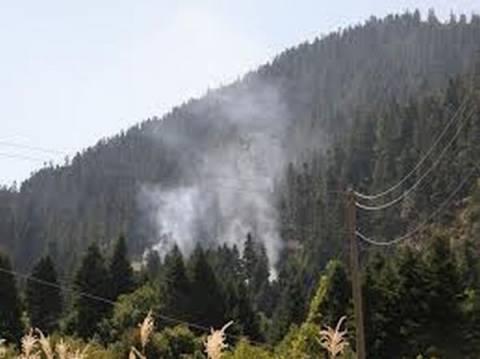 Παρνασσός: Σε εξέλιξη φωτιά που δημιουργήθηκε από αστραπή