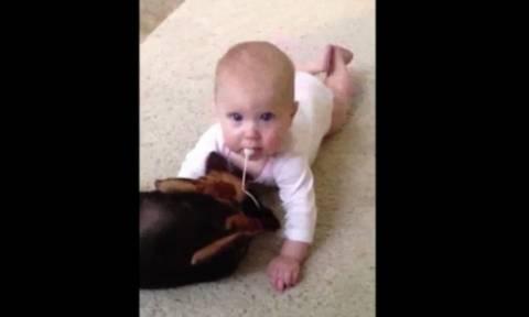 4d3db77d9f6 Απίθανο βίντεο με ένα μωρό και ένα κουτάβι!
