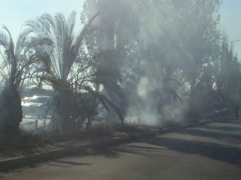 ΤΩΡΑ: Φωτιά στο διάζωμα στο Τροκαντερό  (pics)