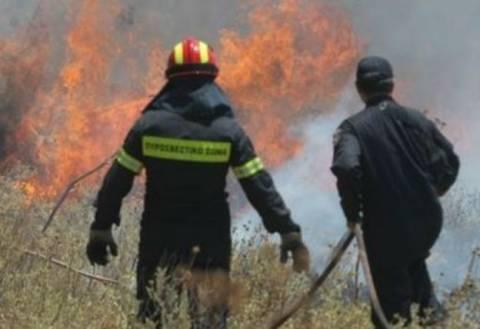 Στις φλόγες η νότια Ρόδος-Εκκενώνεται το χωριό Βάτι