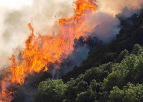 ΣΥΝΕΧΗΣ ΕΝΗΜΕΡΩΣΗ: Πυρκαγιές σε Κρήτη, Σέριφο και Ρόδο