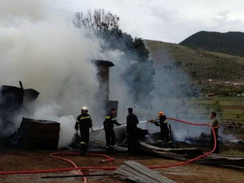 Κάηκαν ζωντανά από πυρκαγιά 500 πρόβατα