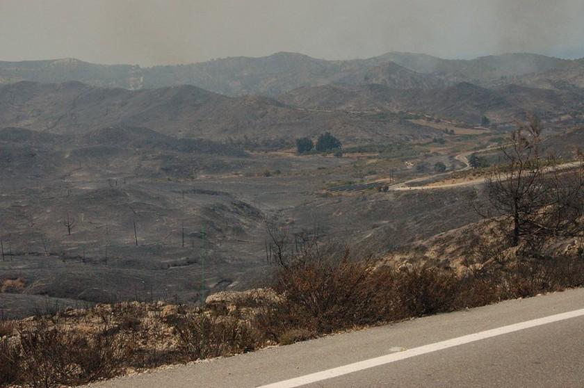 Εικόνες θλίψης από τον πύρινο εφιάλτη στη Ρόδο (ΦΩΤΟΡΕΠΟΡΤΑΖ)