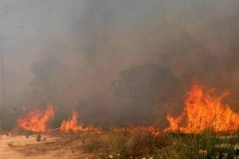 Σε εξέλιξη φωτιά στο Πεδίο Βολής στις Γούβες Ηρακλείου