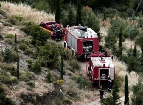 Πολύ υψηλός κίνδυνος για πυρκαγιές αύριο